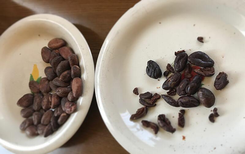 カカオ豆を剥く